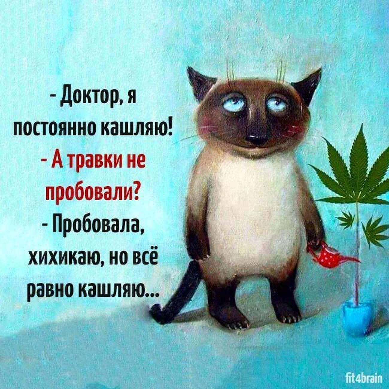 sh.uploads.ru/2FLoN.jpg