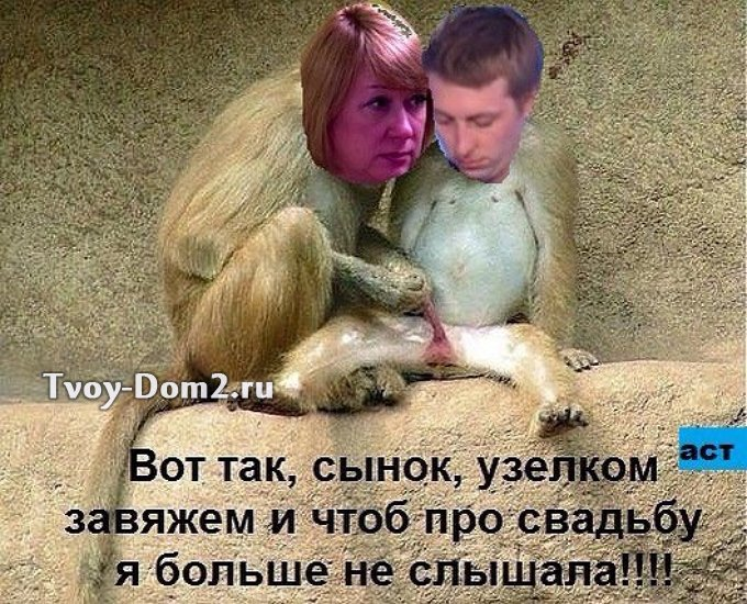 http://sh.uploads.ru/2S7OH.jpg