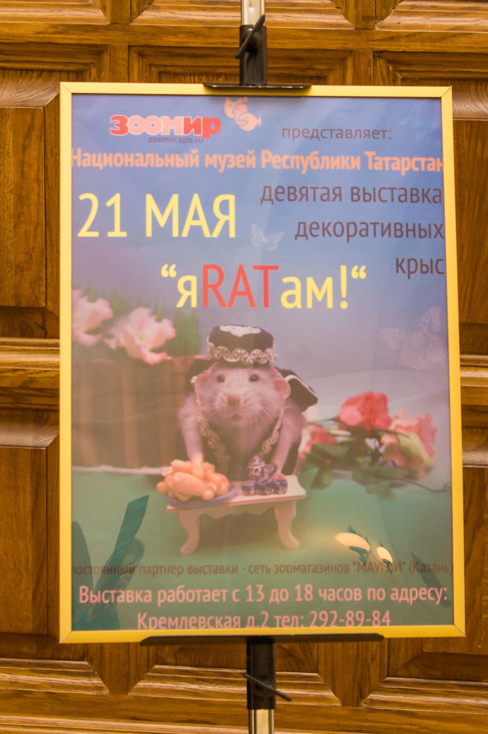 http://sh.uploads.ru/2wjq8.jpg