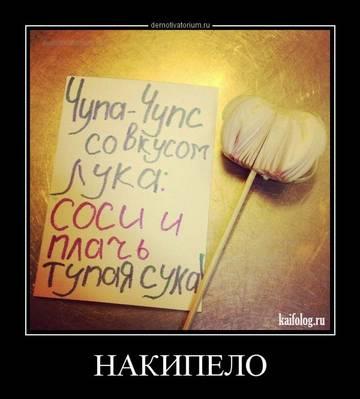 http://sh.uploads.ru/4Ke6D.jpg