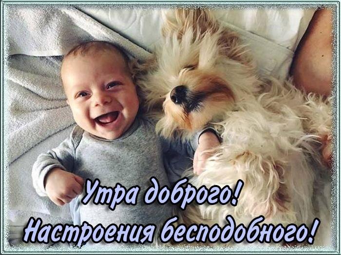 http://sh.uploads.ru/4exWr.jpg