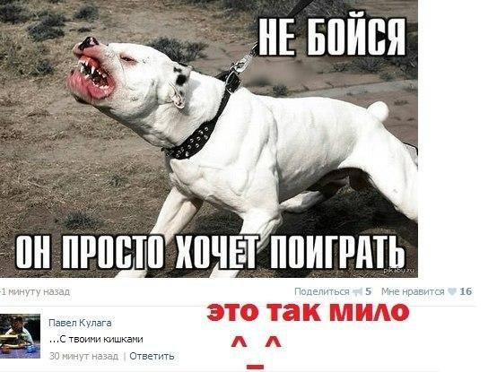 http://sh.uploads.ru/4nW0w.jpg