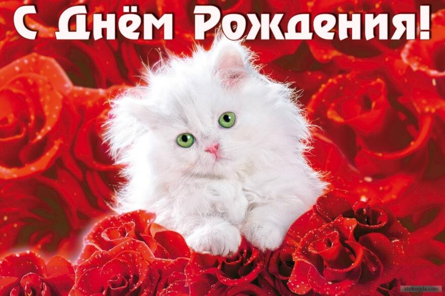 http://sh.uploads.ru/5meKS.jpg