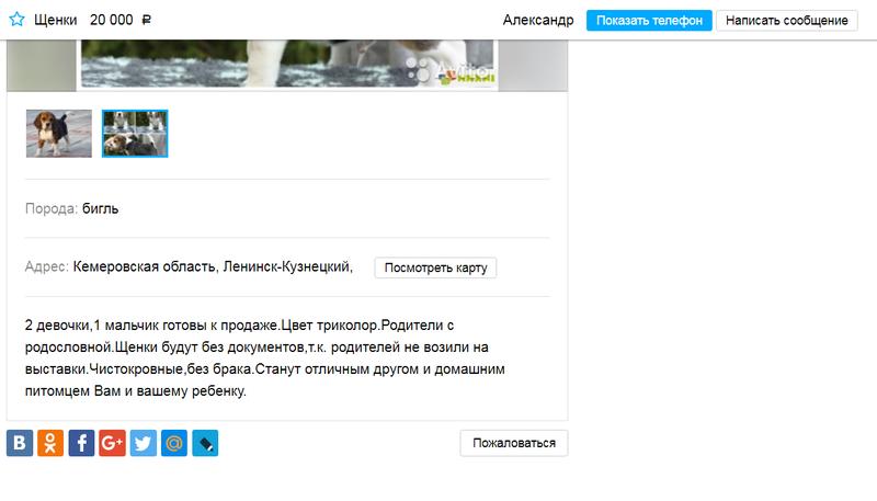 http://sh.uploads.ru/64FMO.png