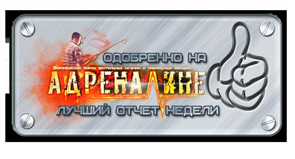 http://sh.uploads.ru/6GLaT.png
