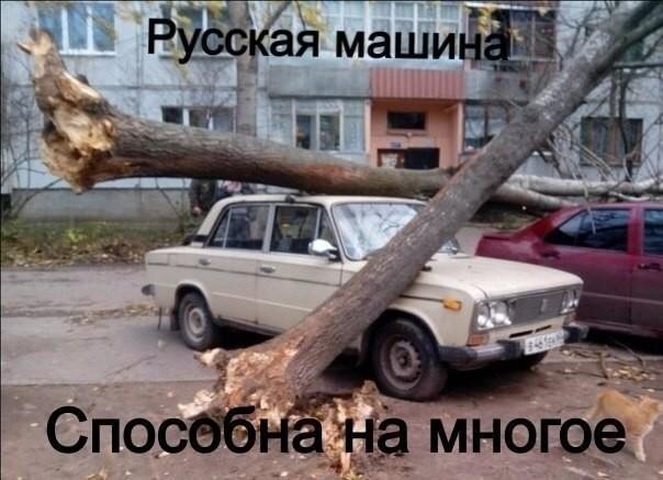 http://sh.uploads.ru/7FHQb.jpg