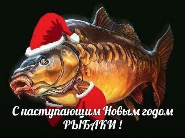 http://sh.uploads.ru/7tedK.jpg
