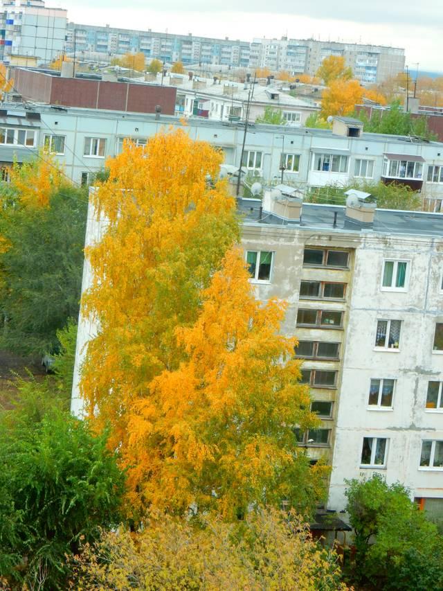 http://sh.uploads.ru/8ep5R.jpg
