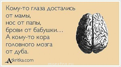 http://sh.uploads.ru/91yGv.jpg