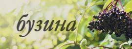http://sh.uploads.ru/9JIGW.jpg