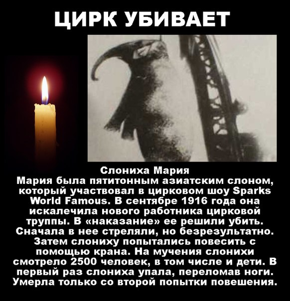 http://sh.uploads.ru/9mN8Q.jpg