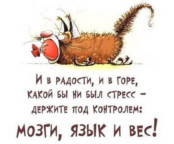 http://sh.uploads.ru/ARqWZ.jpg
