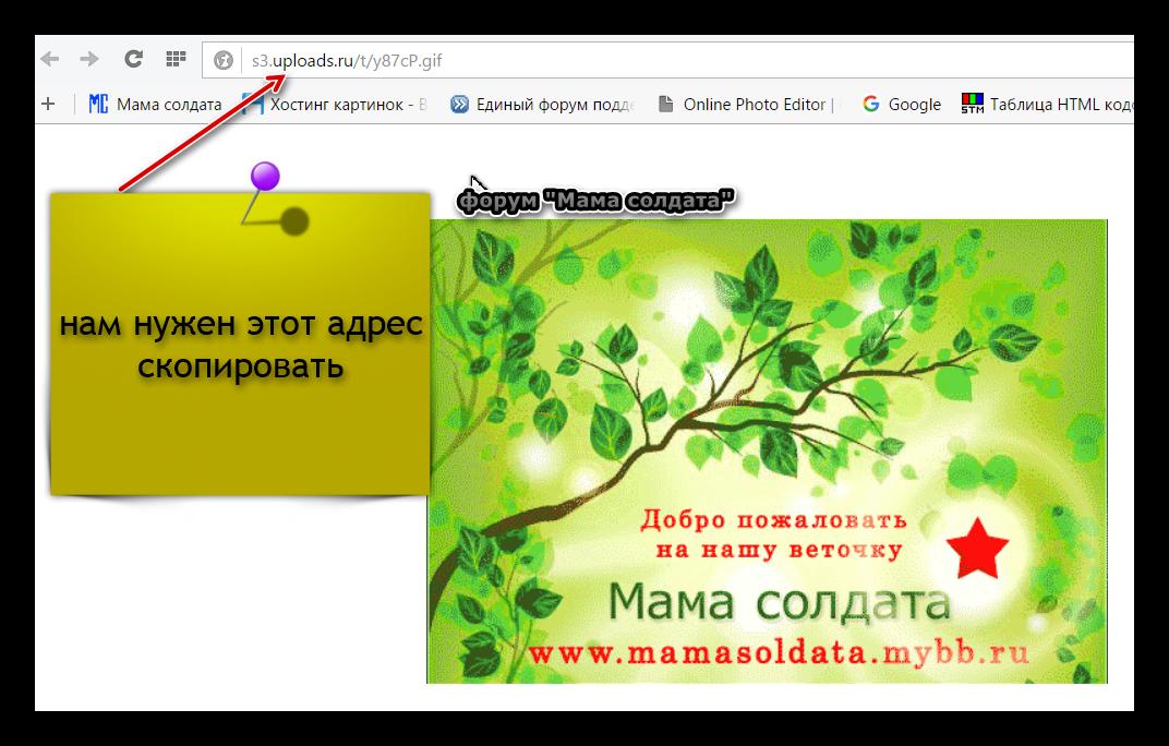 http://sh.uploads.ru/B8GF5.png
