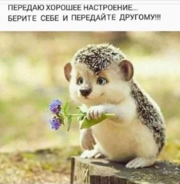 http://sh.uploads.ru/D2QZ3.jpg