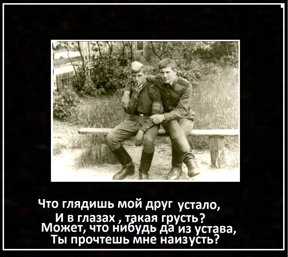http://sh.uploads.ru/D9RFo.png