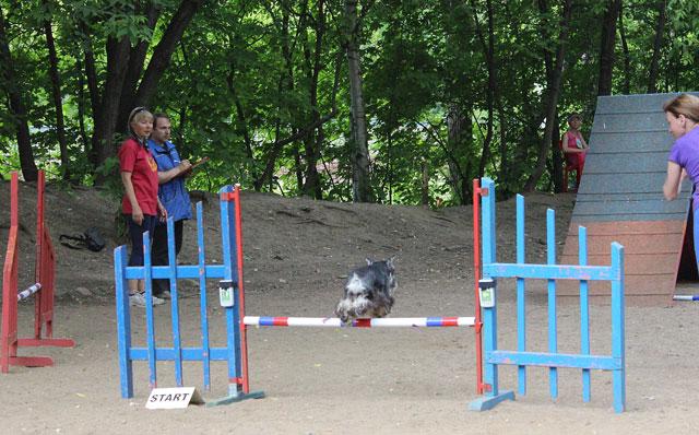 http://sh.uploads.ru/DuAT5.jpg