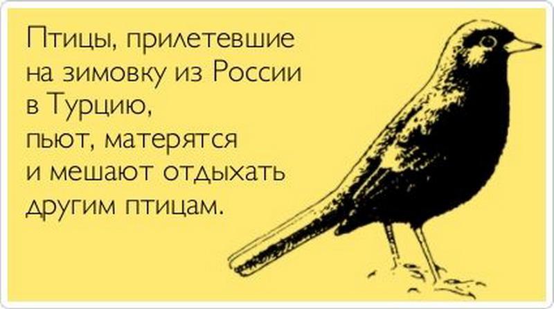 http://sh.uploads.ru/GwOVe.jpg