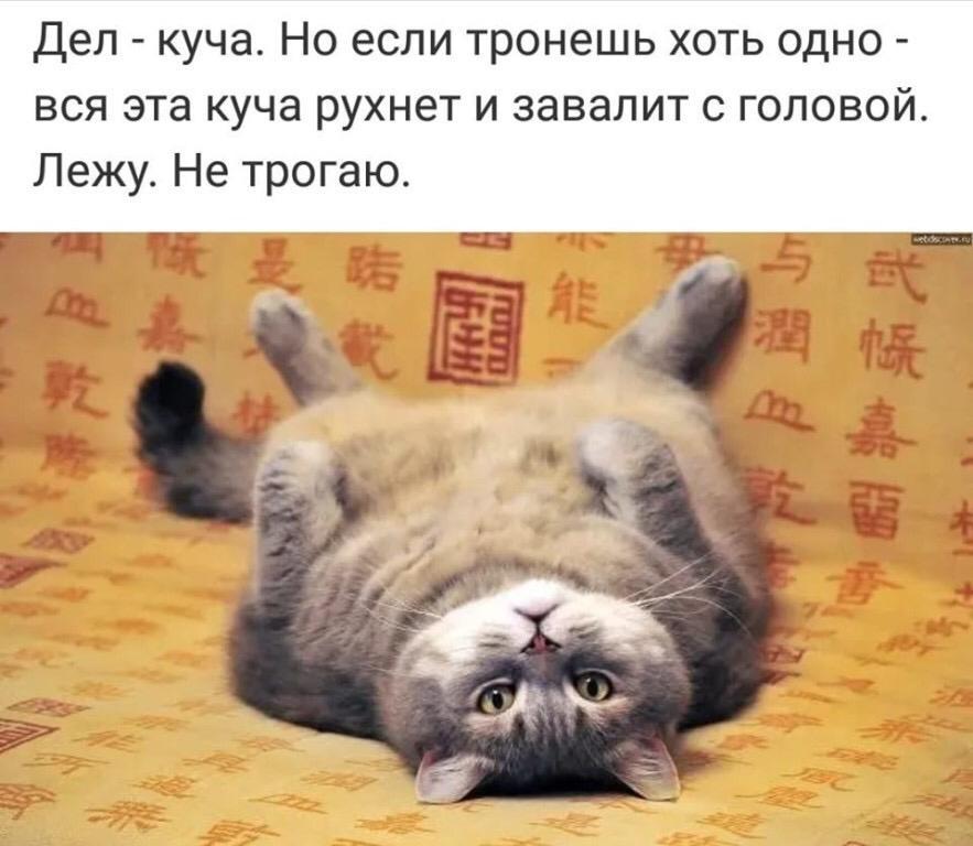 http://sh.uploads.ru/IXbiY.jpg