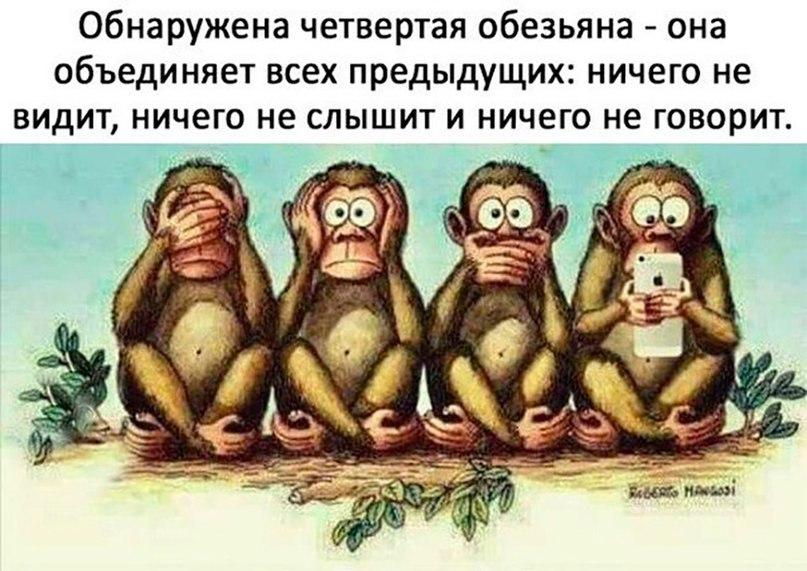 http://sh.uploads.ru/KacjG.jpg