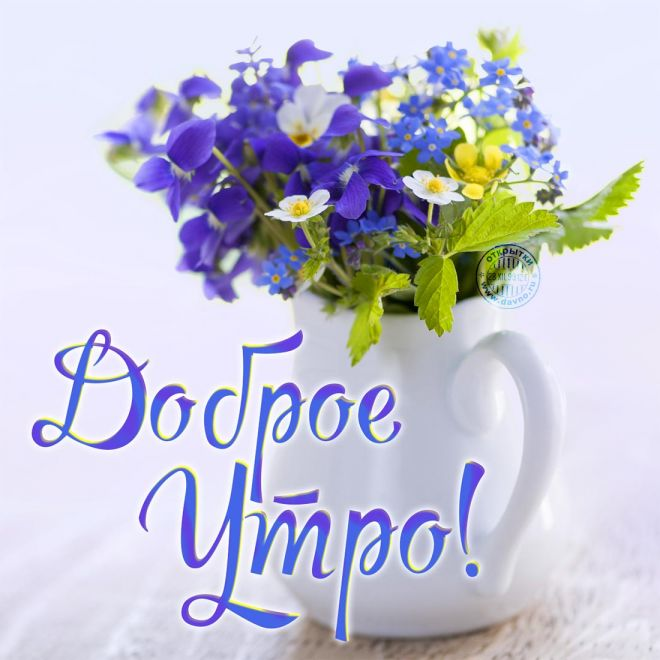 http://sh.uploads.ru/M5qHf.jpg