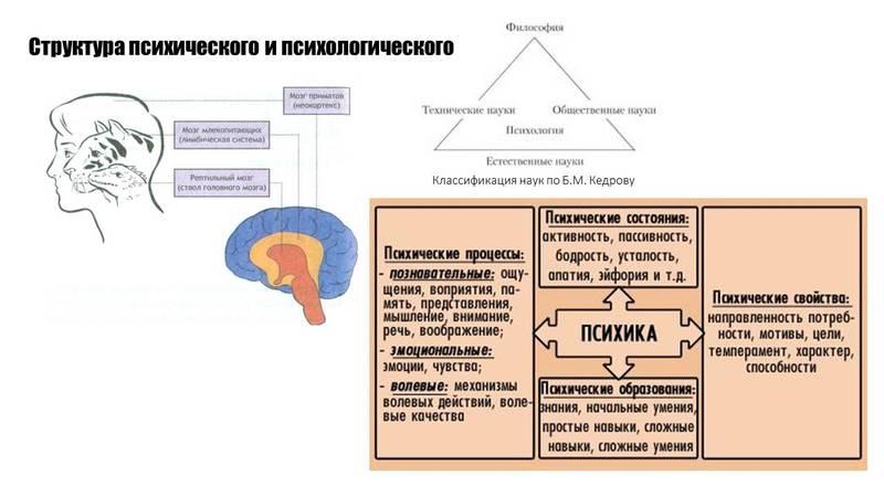 http://sh.uploads.ru/MvuX4.jpg