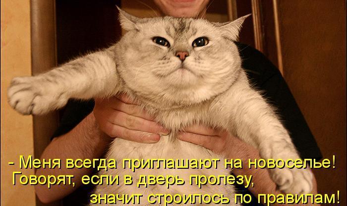http://sh.uploads.ru/QY13f.jpg