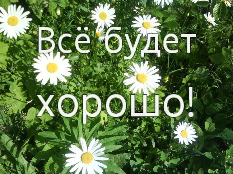 http://sh.uploads.ru/RLwDh.jpg