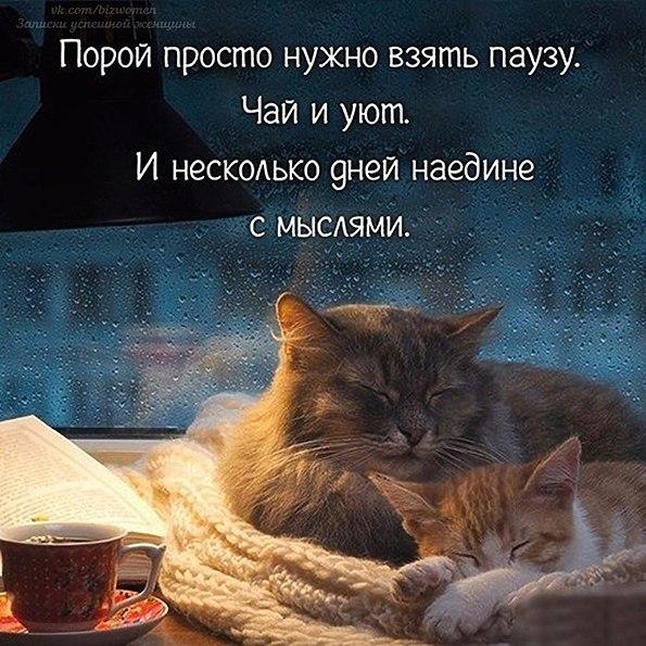 http://sh.uploads.ru/RoifE.jpg