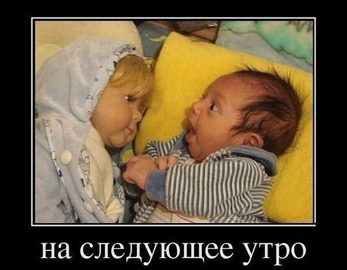 http://sh.uploads.ru/TGR0F.jpg