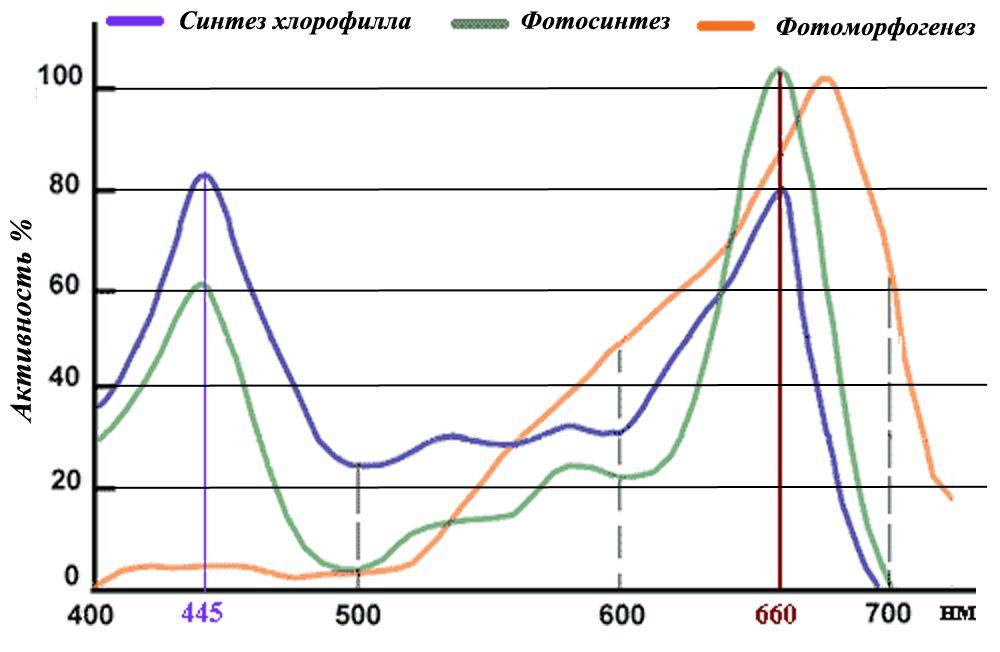 http://sh.uploads.ru/UOQGD.jpg