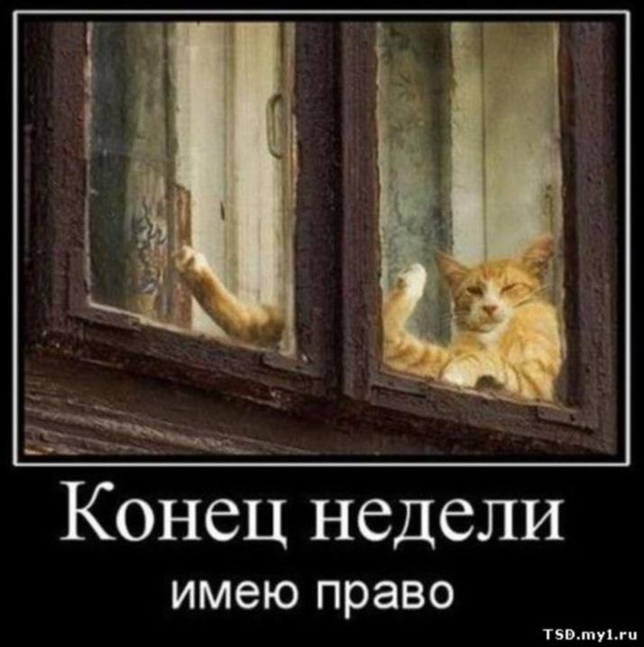 http://sh.uploads.ru/UhYXo.jpg