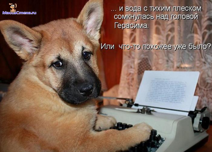 http://sh.uploads.ru/VKYAy.jpg