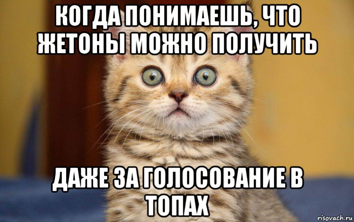 http://sh.uploads.ru/VUkDM.jpg