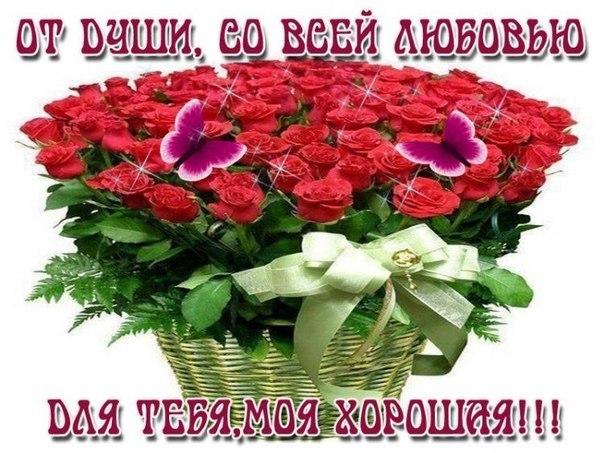 http://sh.uploads.ru/WQOcU.jpg