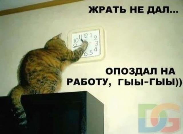 http://sh.uploads.ru/XnWyf.jpg