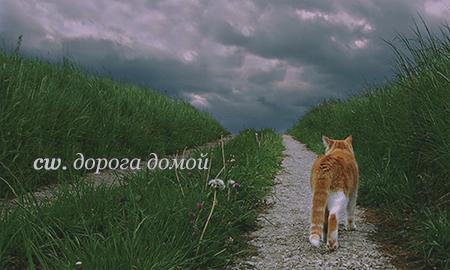http://sh.uploads.ru/XqIKo.png