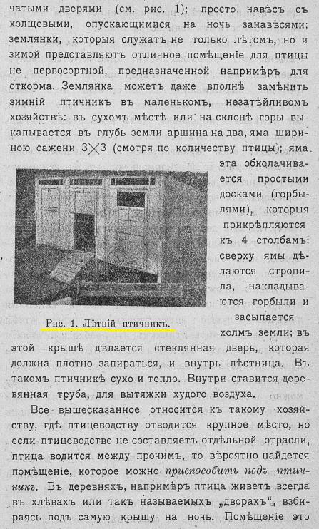 Советы новичку о курочках! - Страница 6 ZjnlU