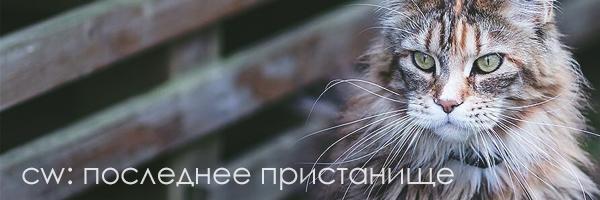 http://sh.uploads.ru/cBr8T.jpg