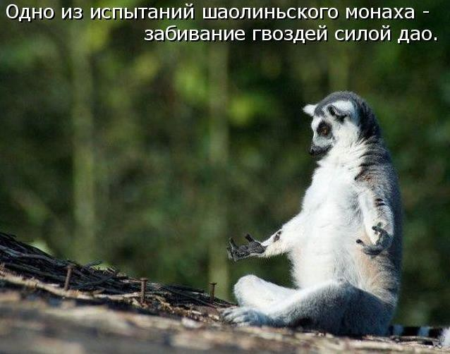 http://sh.uploads.ru/dLC0g.jpg