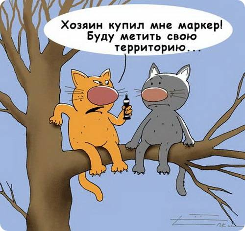 http://sh.uploads.ru/dQWLE.jpg