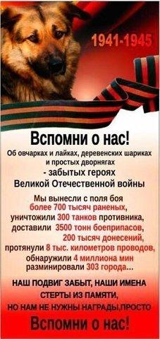 http://sh.uploads.ru/eDauS.jpg