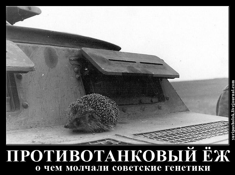 http://sh.uploads.ru/eGxmX.jpg