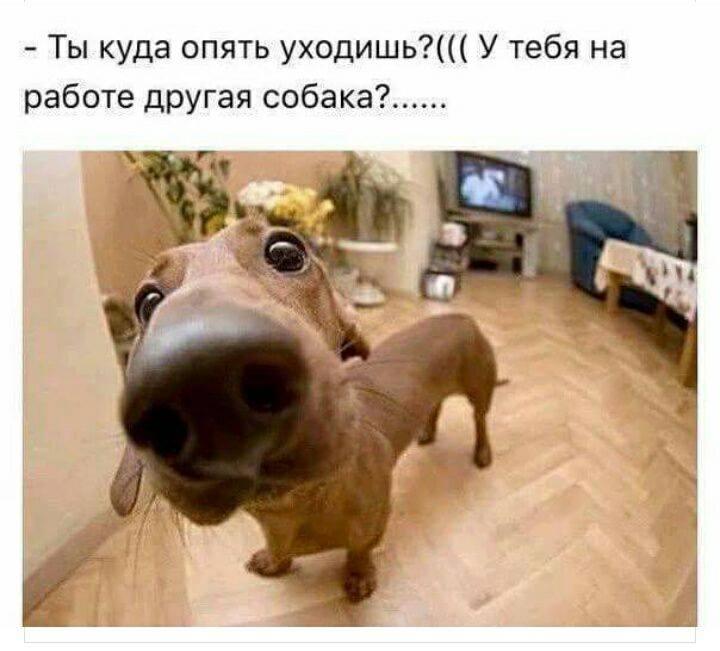 http://sh.uploads.ru/eKEk7.jpg