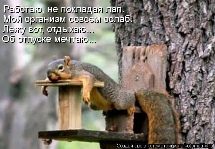 http://sh.uploads.ru/f6m8L.jpg