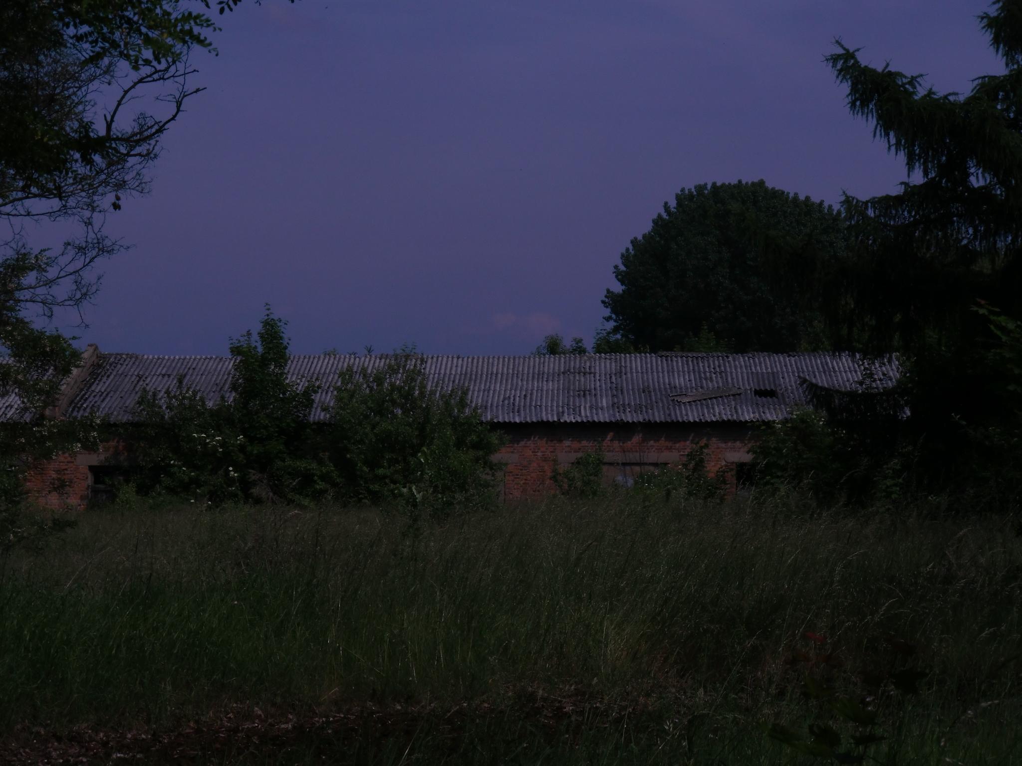http://sh.uploads.ru/fFSqU.jpg