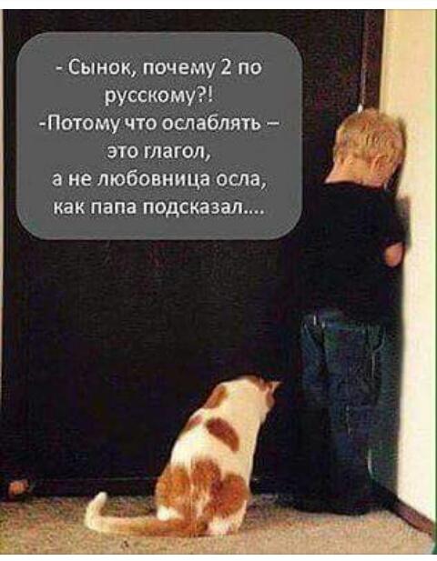http://sh.uploads.ru/fIs0w.jpg
