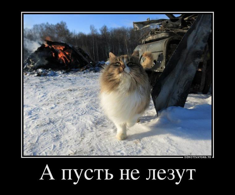 http://sh.uploads.ru/fZqQz.jpg