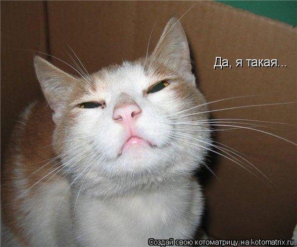 http://sh.uploads.ru/g83dl.jpg
