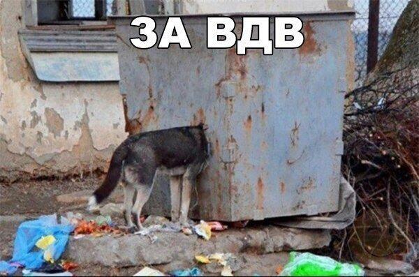 http://sh.uploads.ru/gws2e.jpg