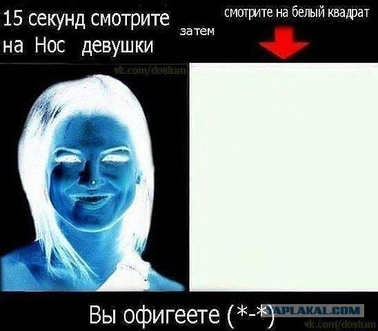 http://sh.uploads.ru/hcp3r.jpg